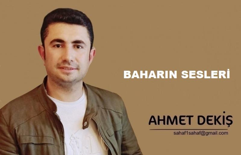 BAHARIN SESLERİ