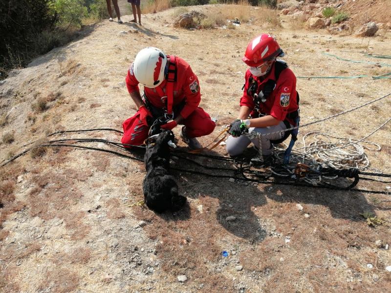 Kayalıklarda 1 gündür mahsur kalan yavru keçi kurtarıldı