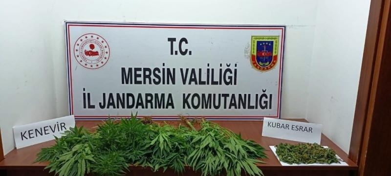 Mersin'de uyuşturucu operasyonu 7 gözaltı