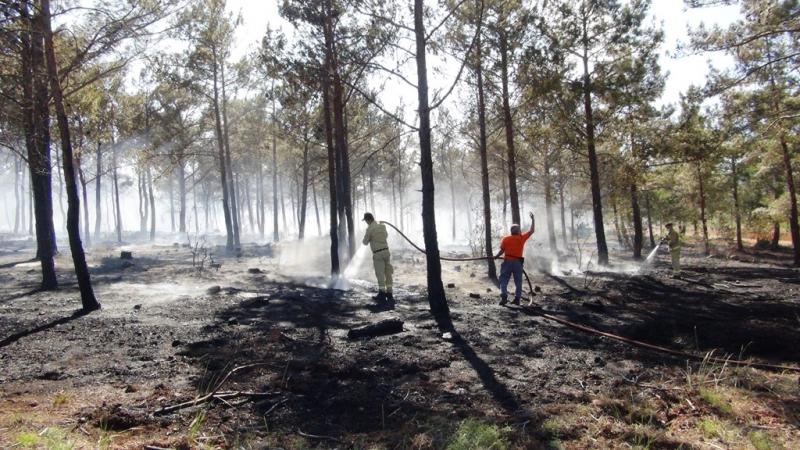 Silifke'de 20 dönüm ormanlık alan yandı
